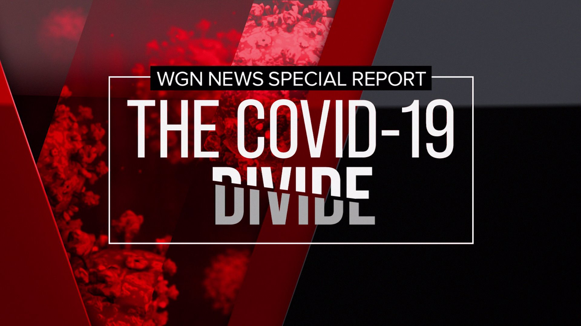 COVID-19 Divide